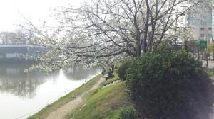 Ohorie park