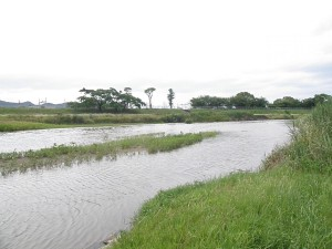 Japanese river